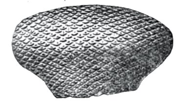 receptaculites-subturbinatus-silurian-sponge-waldron-shale-indiana-igs-1881-plate-2-figure-1