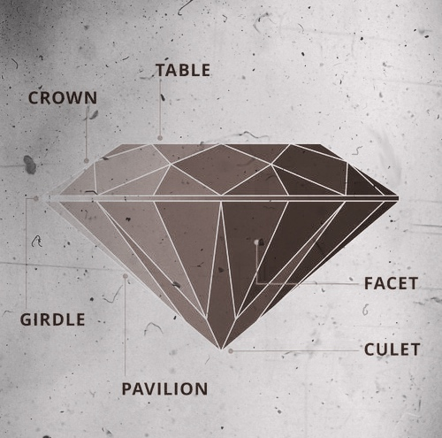 Diamond's anatomy